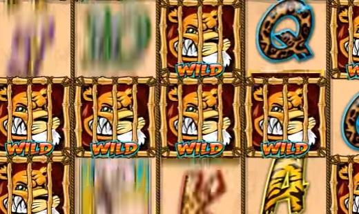 -со-львами-Wild-Gambler.jpg