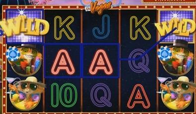 Cats-in-Vegas-Spielautomaten.jpg