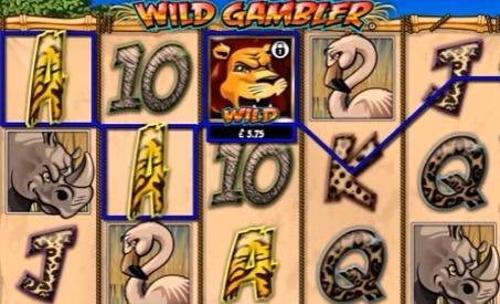 Wild-Gambler-tragamonedas.jpg
