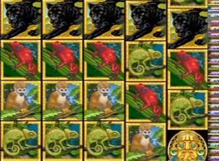 amazon-Wild-slots-juegos.jpg