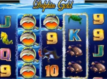 Dolphin-Gold-Slot.jpg